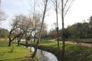 Parque_Verde_Bonito