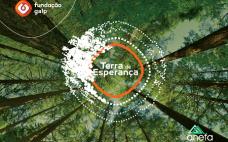 """Município do Entroncamento realiza ação de arborização na """"Cidade Nova"""""""