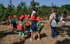 """Crianças participantes no Projeto """"Heróis da Fruta"""" realizaram visita ao Cadaval"""