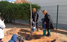 Câmara Municipal oferece e planta pinheiros com as escolas na Comemoração do Dia da Árvore