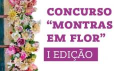 """Concurso """"Montras em Flor"""" (1ª edição)"""