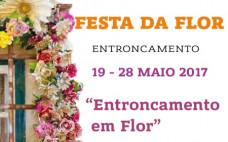 IV Edição da Festa da Flor do Entroncamento