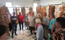 Visita dos utentes do Centro de Convívio ao Observatório do Sobreiro e da Cortiça de Coruche