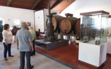 Idosos do Centro de Convívio visistaram o Museu Rural e do Vinho