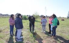 Alunos e Município unidos na plantação de árvores no concelho