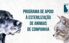 Município do Entroncamento lança Programa de Apoio à Esterilização de Animais de Companhia
