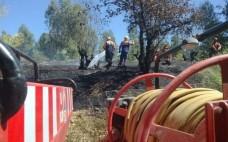 Vigilância Florestal realizada pelo Município do Entroncamento terminou a 30 de setembro