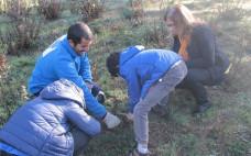 O Município do Entroncamento associou-se ao Projeto Plantar Portugal